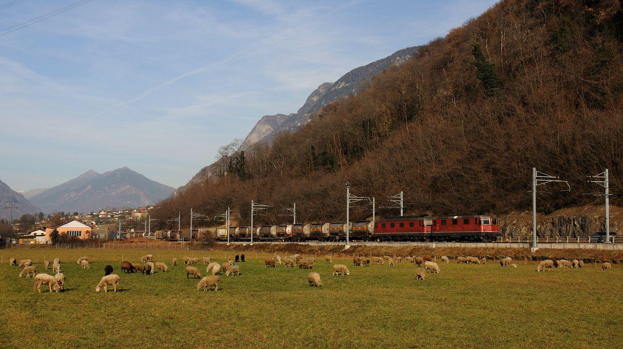 Bei Castione-Arbedo konnte einem Güterzug mit einer Re10/10 aufgelauert werden. Re10/10 ist die inoffizielle Bezeichnung einer Doppeltraktion aus je einer Lok der Baureihe Re6/6 und Re4/4. 4/4 beudeutet dabei, dass 4 von 4 Achsen angetrieben sind.