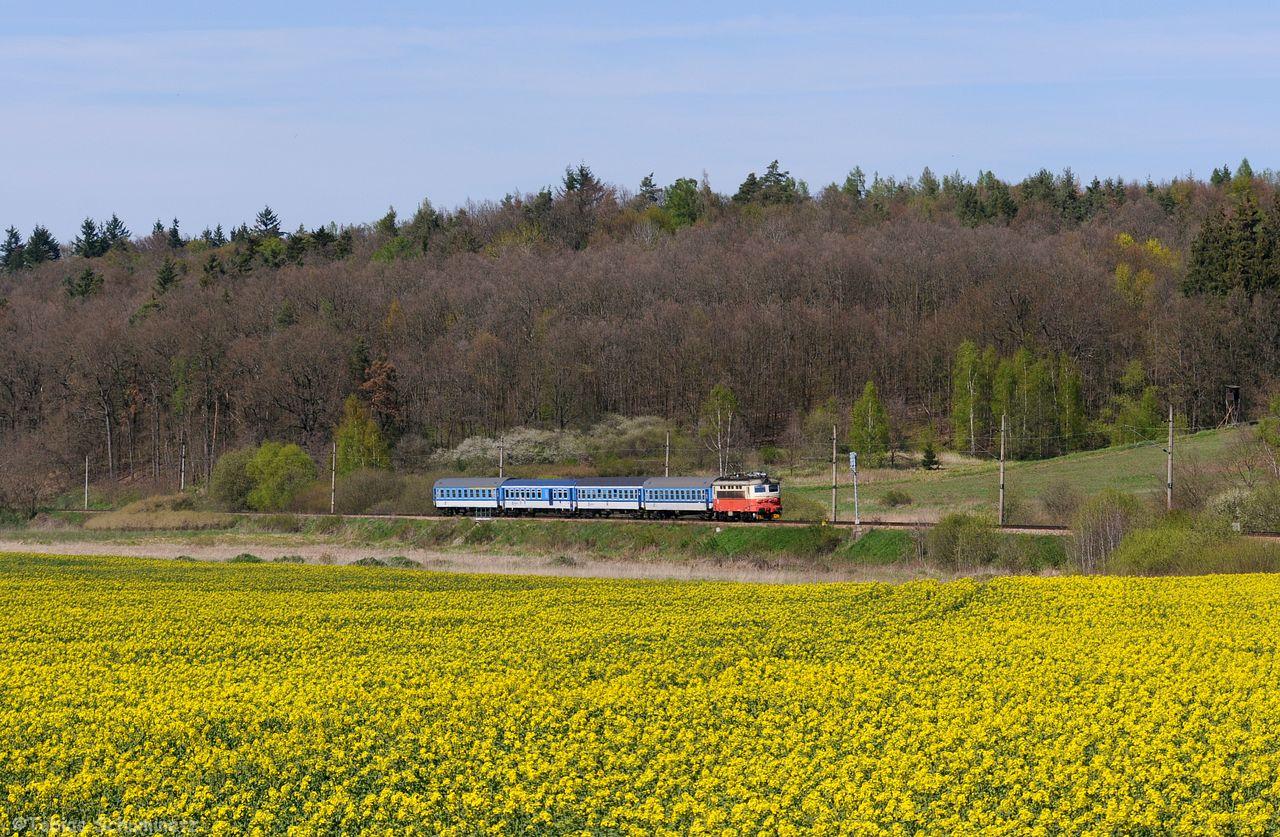 Für den Gegenzug mit 242 230 und R669 bin ich dann zu dem im März erspähten Rapsfeld bei Milenovice gefahren.