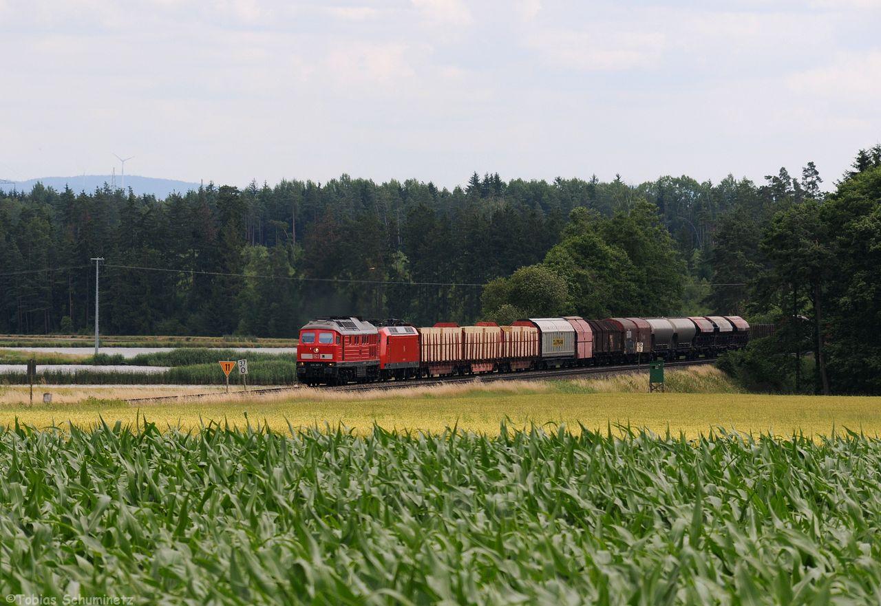 Den Abschluss machte dann 233 367 mit einer GA Lok 145 022 bei Oberteich. Wir haben danach aufgrund der dichten Bewölkung abgebrochen.