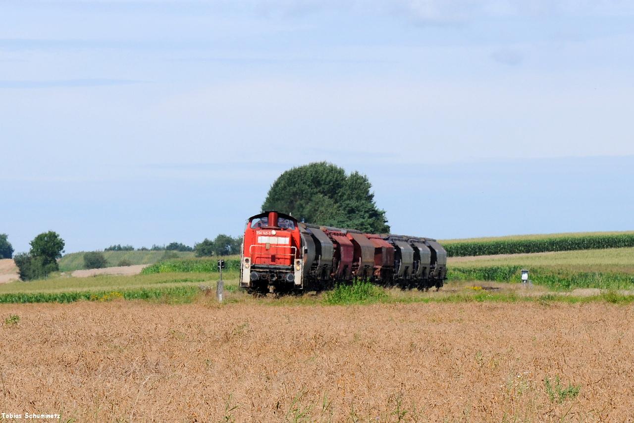 Kurz vor Hirschau hatte ich einen Teleblick über die warmen Felder ausprobiert. In der Mittagszeit gaben die Felder bereits viel Hitze ab, weshalb auch der Zug durch das Hitzeflimmern rollt.