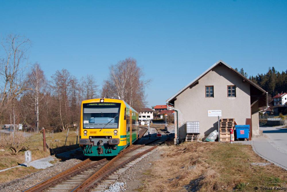 Planverkehr im Tal des Schwarzen Regens! VT650.71 als WBA 87069 am 12.03.2017 in Ruhmannsfelden.