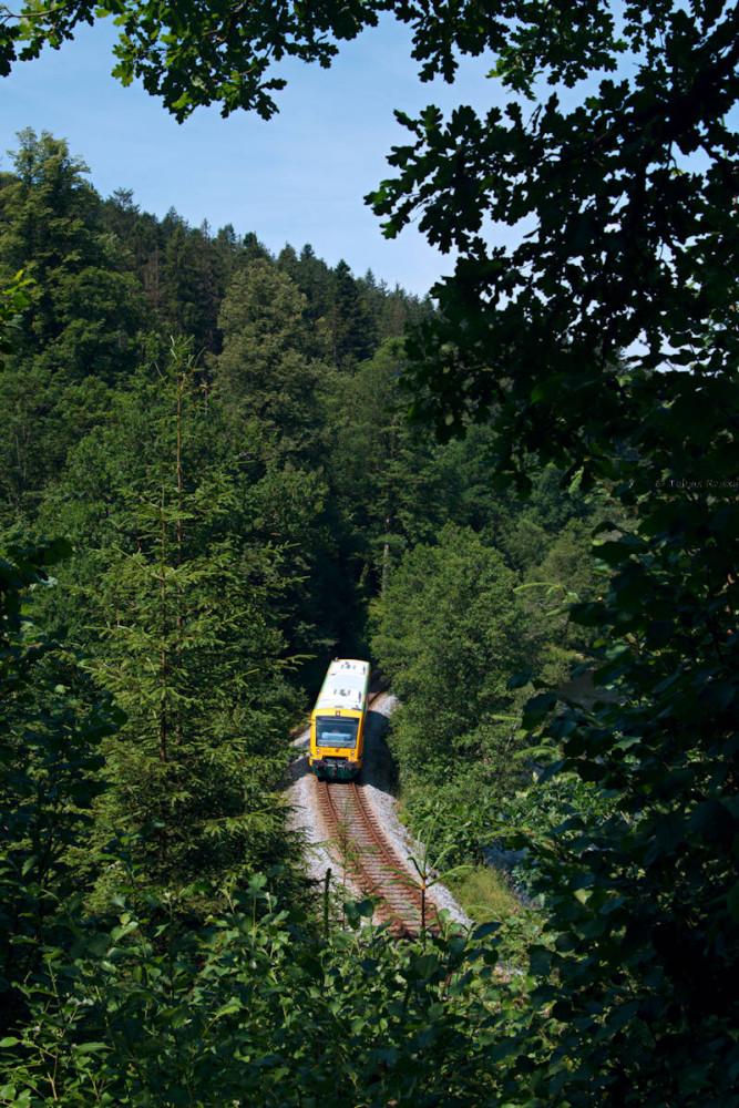 Der bekannte Aussichtspunkt bei Gumpenried-Asbach ist mittlerweile leider so stark zugewachsen, daß kein Bild von Zug und Regen mehr möglich ist.