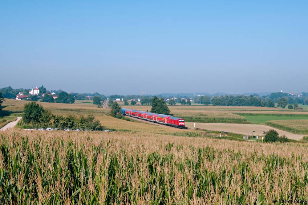 Rund um Dorfen haben sich die Bauern offenbar auf den Anbau von Mais eingeschossen, was das Fotografieren nicht gerade erleichtert. 245 013 war unterwegs nach Mühldorf.
